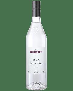 Liquore al Cacao Chiaro - Briottet