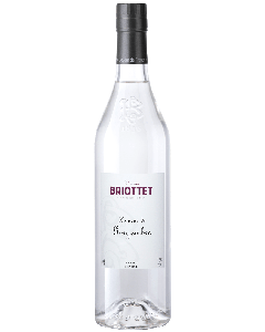 Liquore allo Zenzero - Briottet