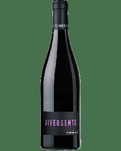 """Ventoux Rouge """"Divergente"""" 2016 - Domaine de Fondrèche"""